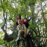 Kinder sitzen auf einem Baum.